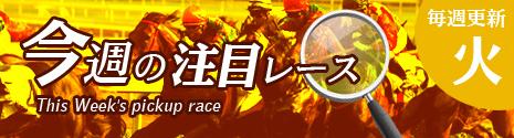 メビウスの無料コンテンツ 今週の注目レース