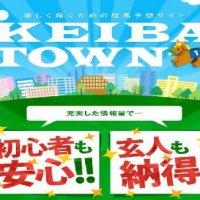 稼ぎたい事を一番に考える『KEIBA TOWN(ケイバタウン)』の口コミを検証する!
