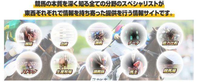 競馬トップチーム_分野
