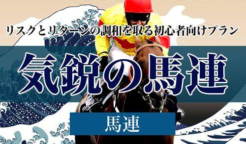 TENKEI_気鋭の馬連